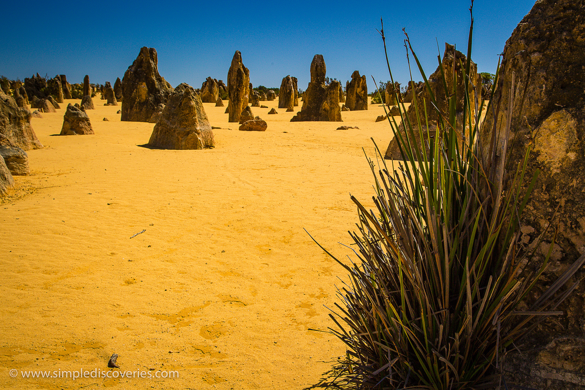 pinnacles_desert_australia