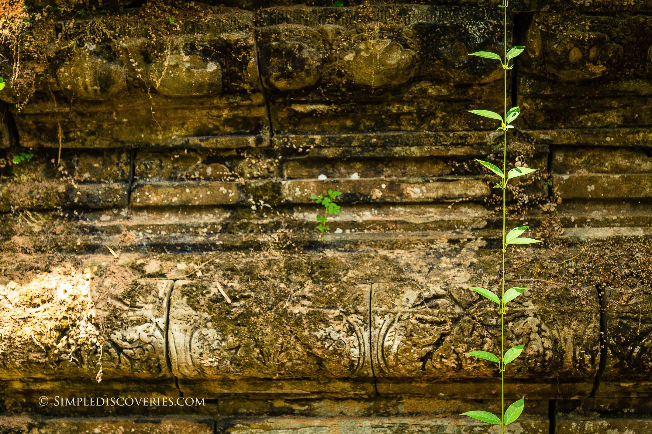 cambodia_temple_detail