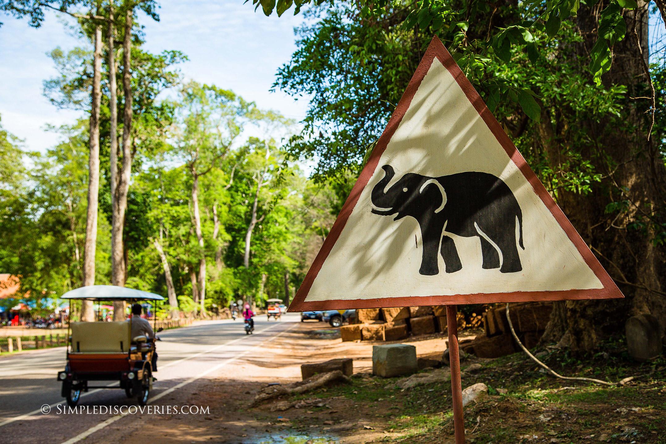 cambodia_elephant_sign