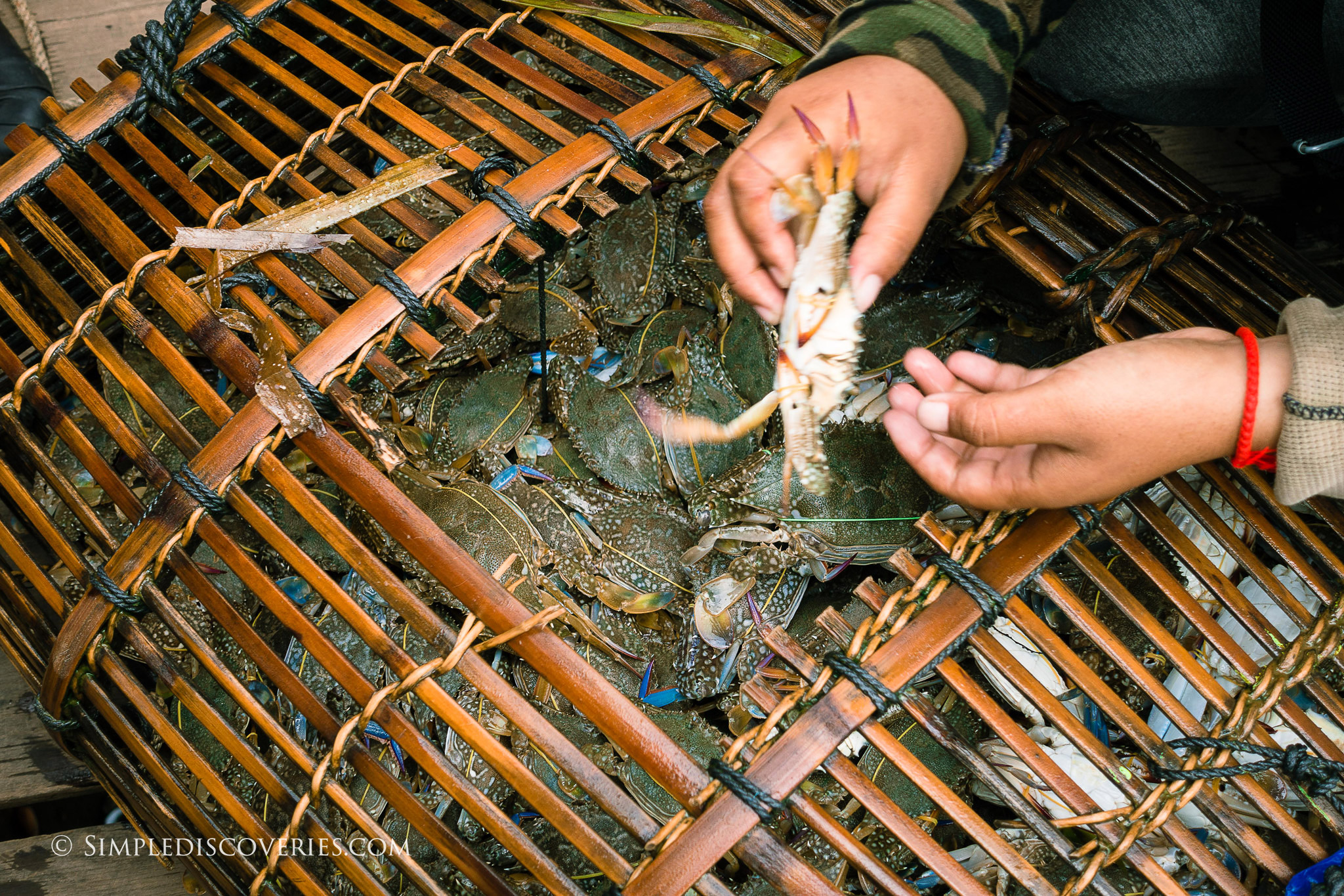 cambodia_crab_market_kep