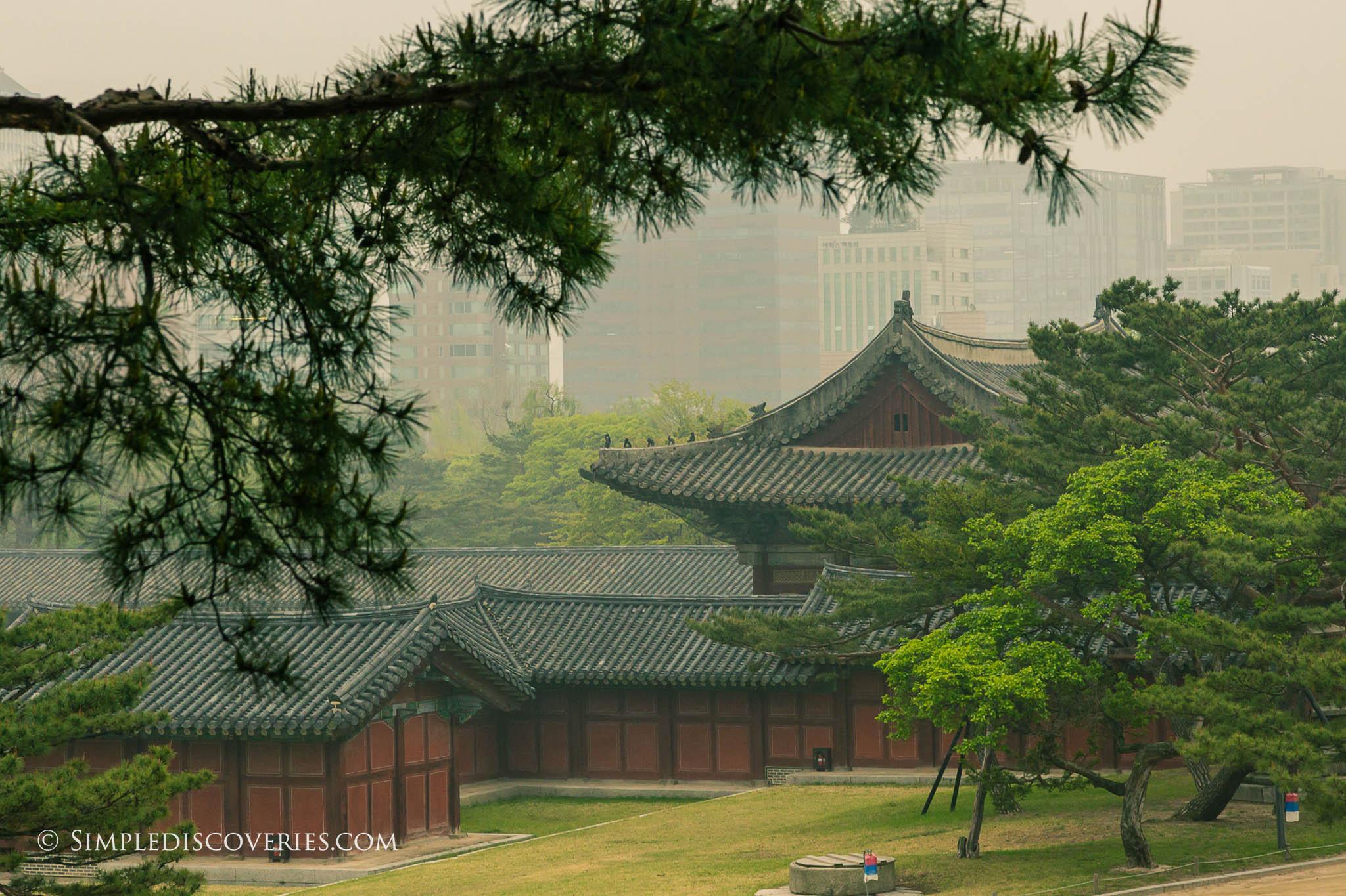 south_korea_changgyeonggung_palace
