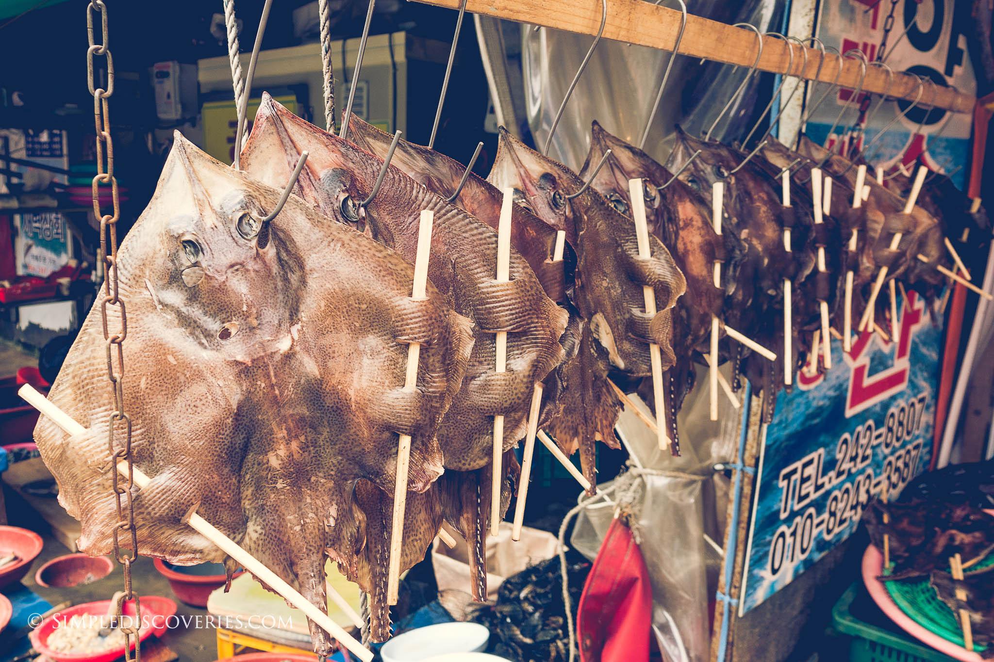 jagalchi_dried_fish_korea