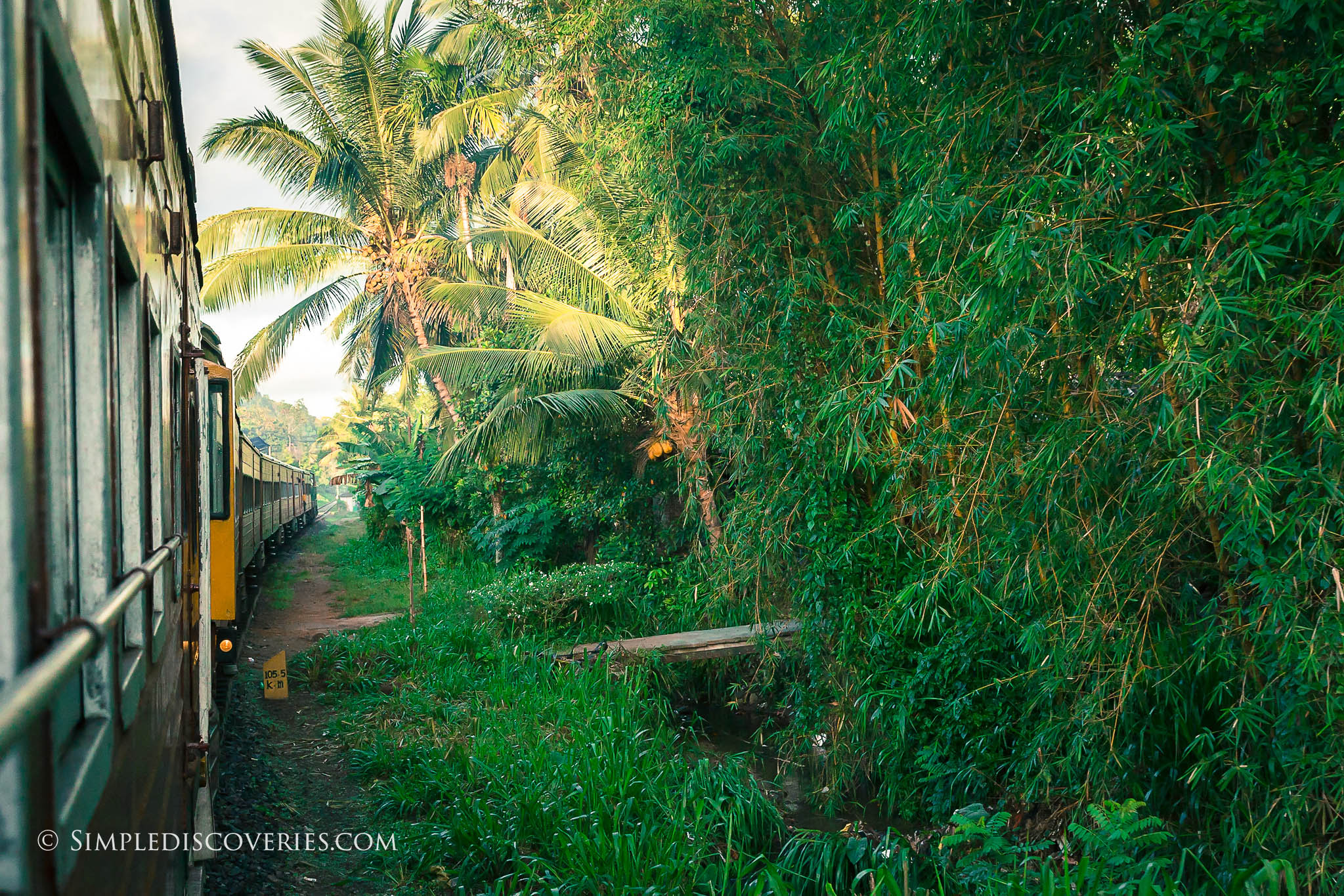 train_riding_srilanka