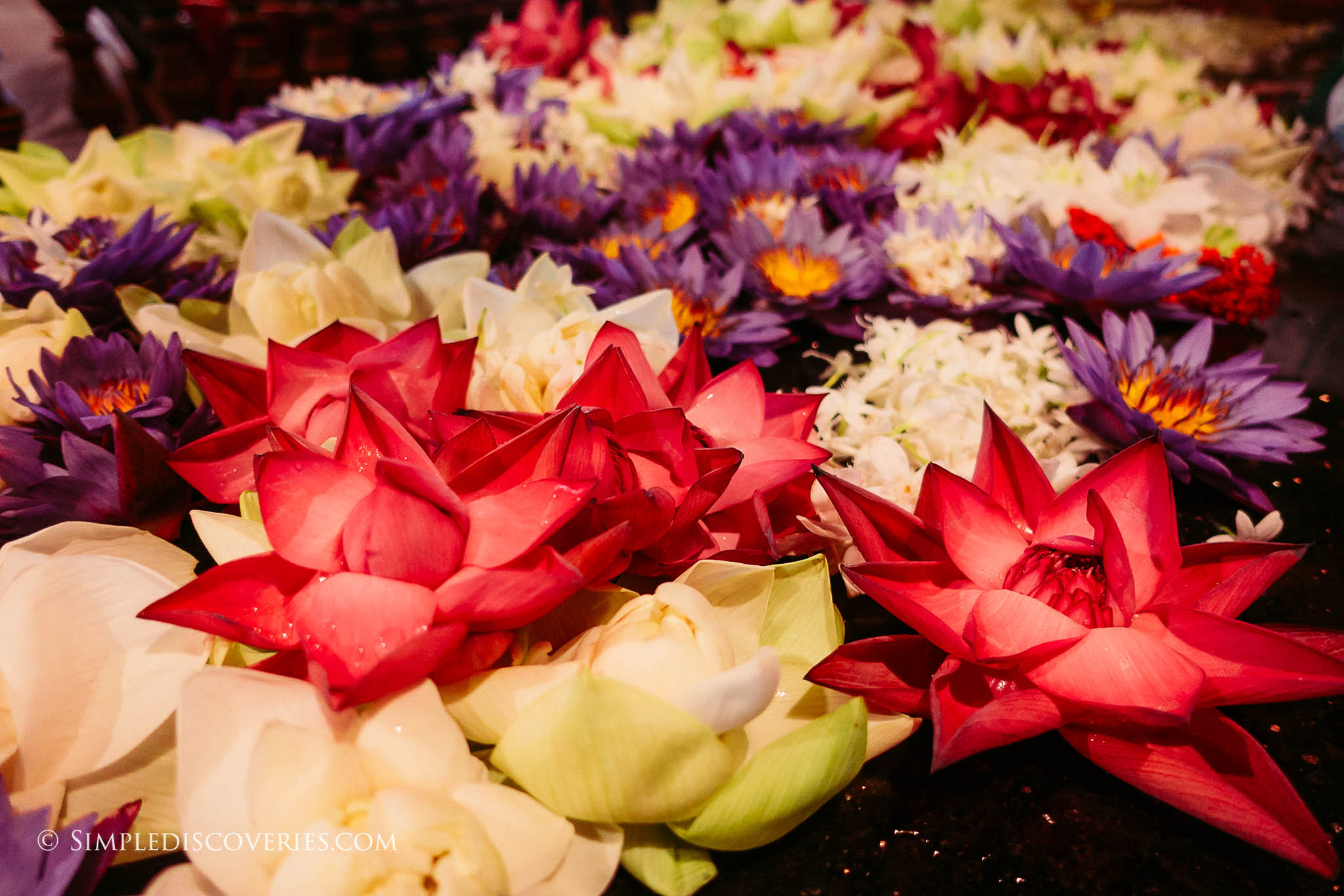 srilanka_flower_offerings