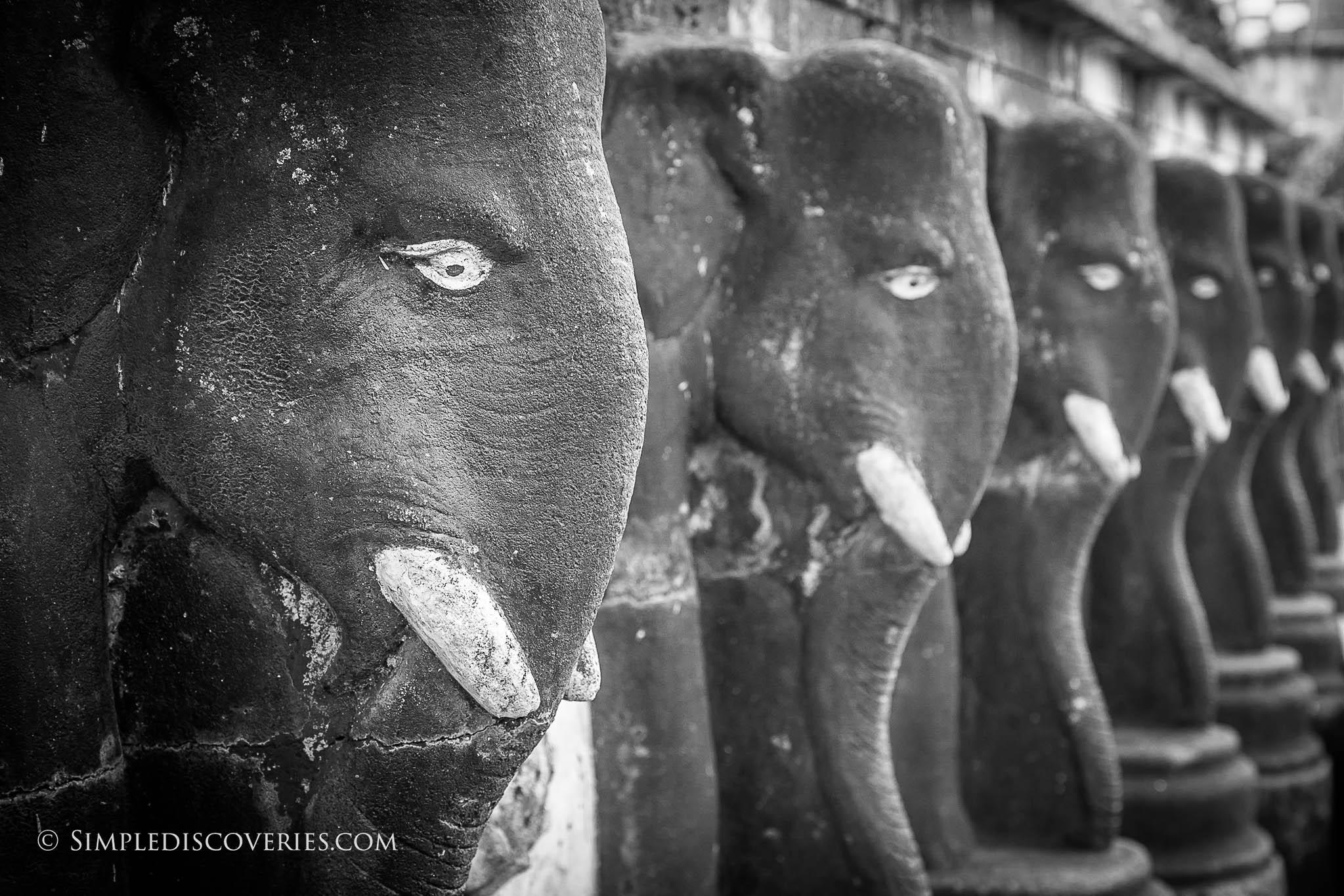 srilanka_elephant_statues