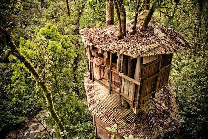 Дивовижне село з будинками на деревах (31 фото) (2)