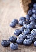 biological blueberries