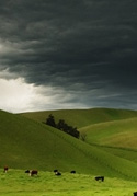 storm over agriculture