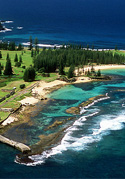 Biological agriculture in Norfolk Island