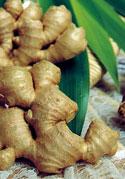 biologically farmed ginger