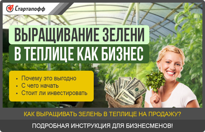 Выращивание зелени на продажу в гараже