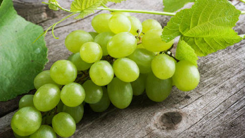 Во сне есть виноград темный