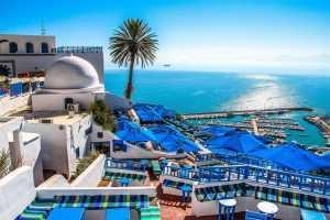 Можно ли из туниса вывозить ракушки из