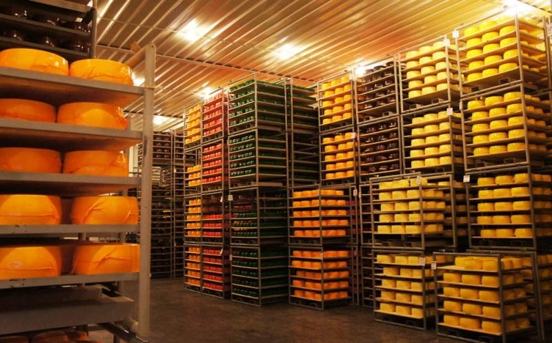 Завод по производству сыра