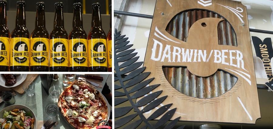 Darwin bar décoration magnifique bordeaux
