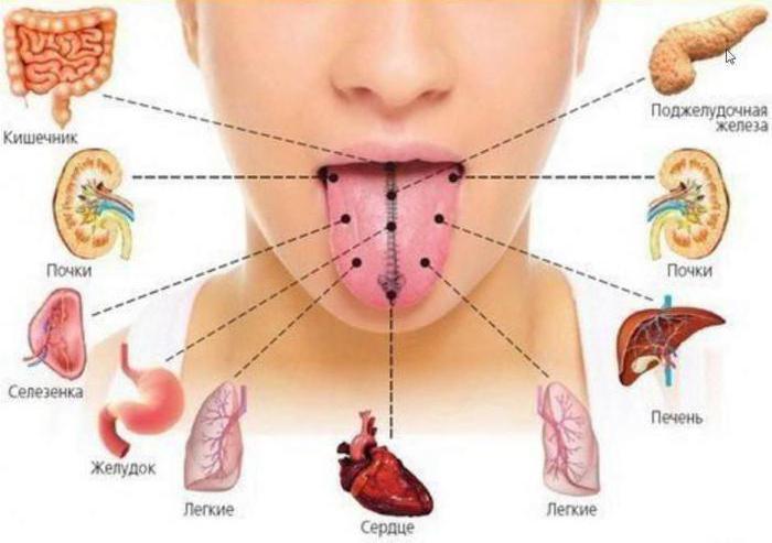 серый налет на языке причины лечение