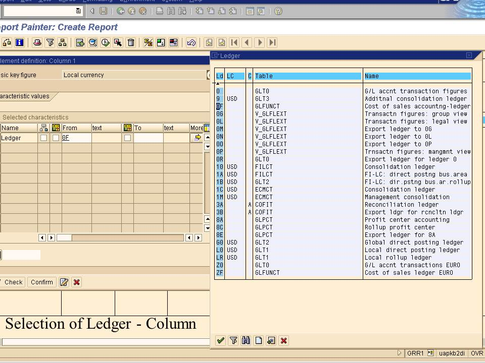 7. Selection of Column Ledger