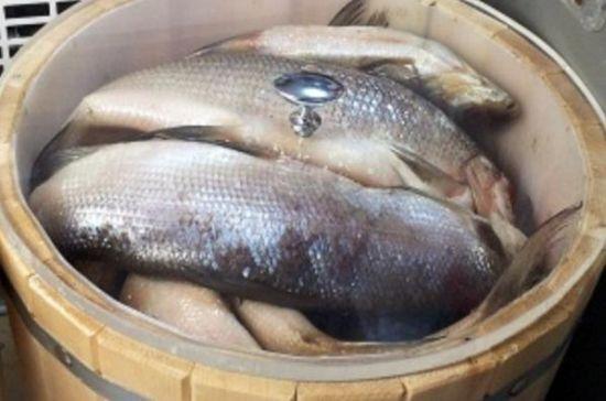 Как приготовить омуль рыба