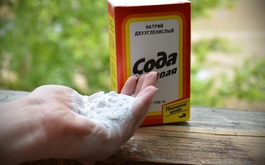 Сода как средство против муравьев