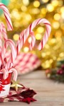 Holiday Peppermint Perfection