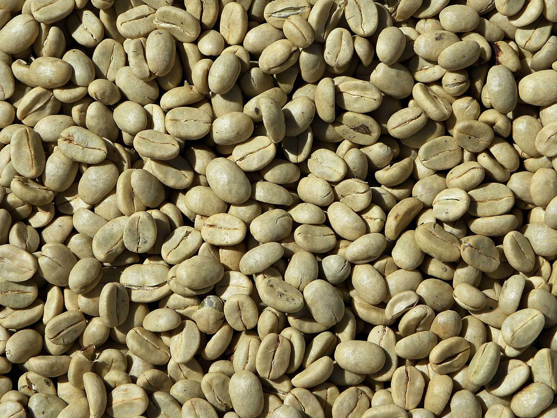 zelená káva účinky na hubnutí