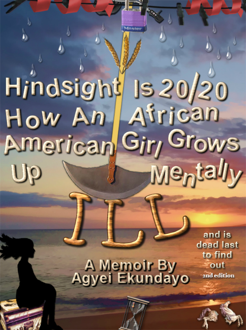 Hindsight is 20/20, book