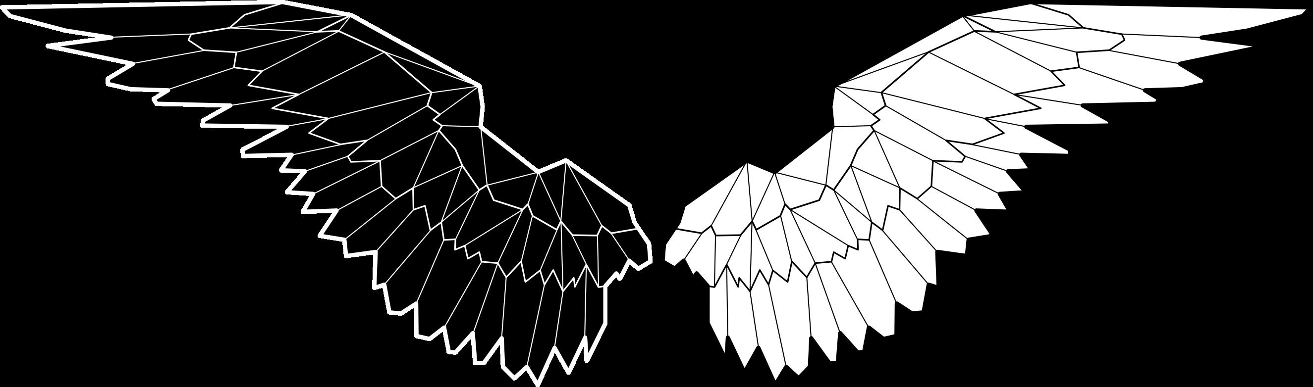 Skydivecollective logo white bg a3vett