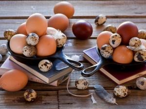Куриные яйца и перепелиные соотношение