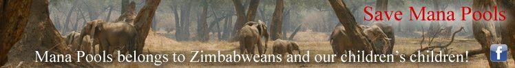 The zimbabwe situation news