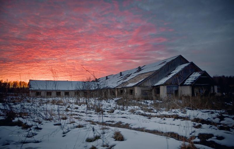 Деревня Кучепалда, Архангельская область Некогда крупнейшая в Каргопольском районе и известная