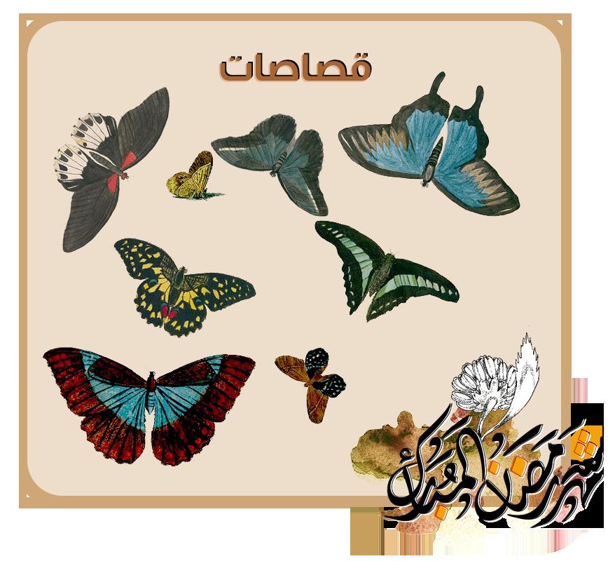 """رَمضَانيَّــاتْ """"مجموعَة منوّعة """" butterfly.png"""