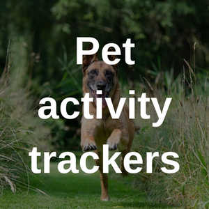 pet activity trackers