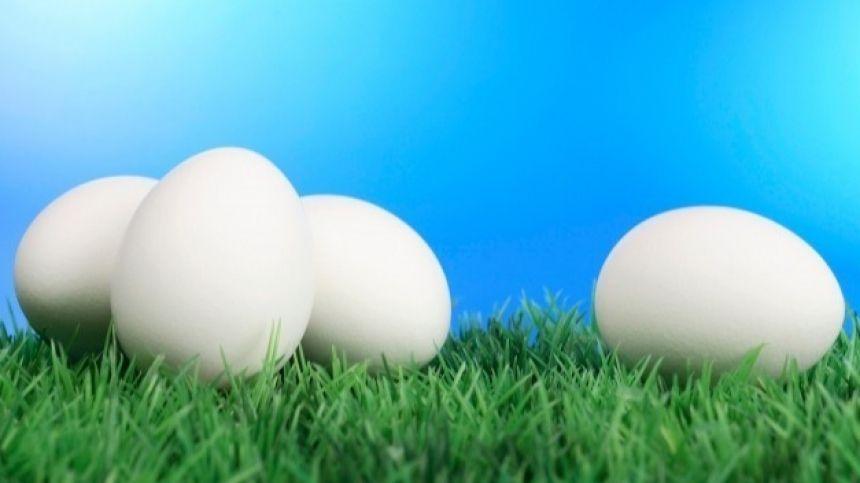 Сварить яйца с жидким желтком