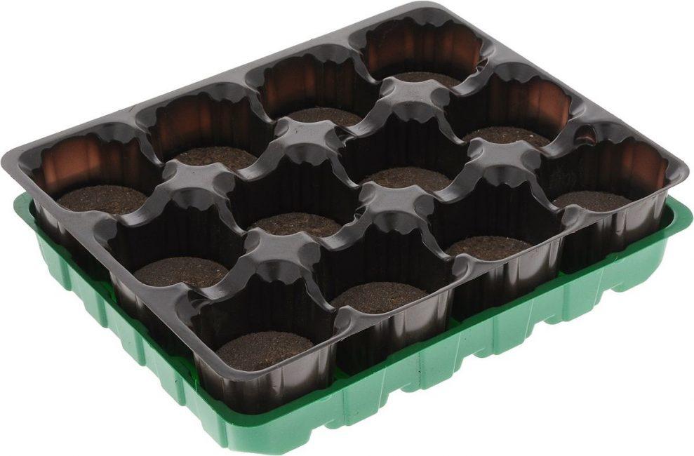 Простейший ящик для выращивания рассады в торфяных емкостях на 12 мест