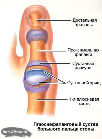 Обертывание суставов рожью состав мази для лечения суставов
