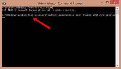 command prompt points to app directory