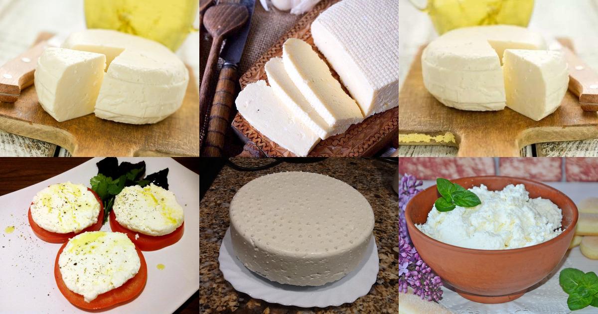 Как в домашних условиях сделать сыр из молока