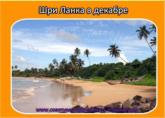 Лучший пляж шри ланки в декабре
