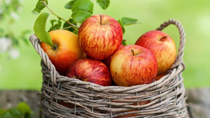 Яблочное варенье дольками рецепт с фото пошагово