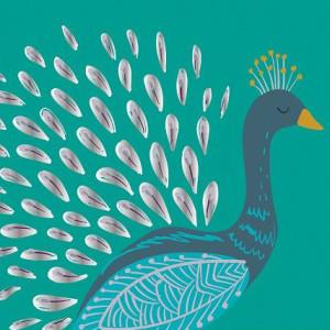 Birds of a Feather - Peacock