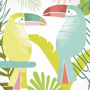 Birds of a Feather - Toucan