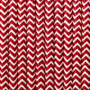 Red Zig Zag Party Straws (25)