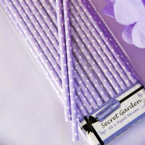 Secret Garden Paper Straws (25)