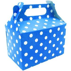 Sky Blue Dotted Party Box (10)