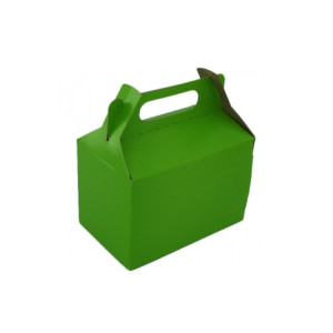 Lime Green Party Box (10)