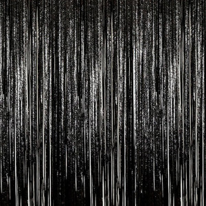 Black Foil Fringe Backdrop