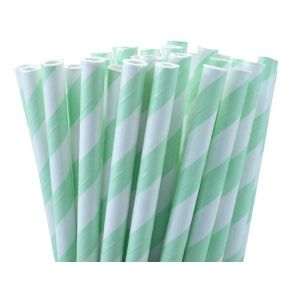 Mint Green Party Straws (25)