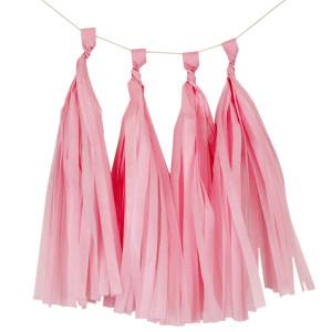 Light Pink Tissue Paper Tassel Kit