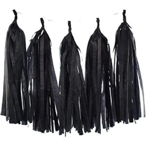Black Tissue Paper Tassel Kit (12 pieces)