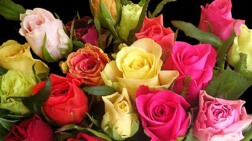 Букет роз во сне получить